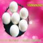 江苏陶瓷氧化锆球-球磨机磨珠-砂磨机磨介
